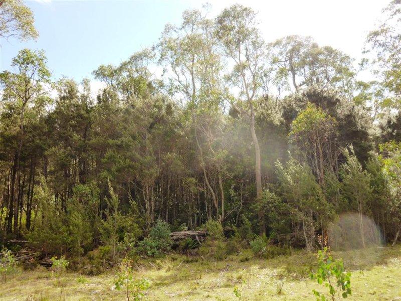 . Cradle Mountain Road, Moina, Tas 7310