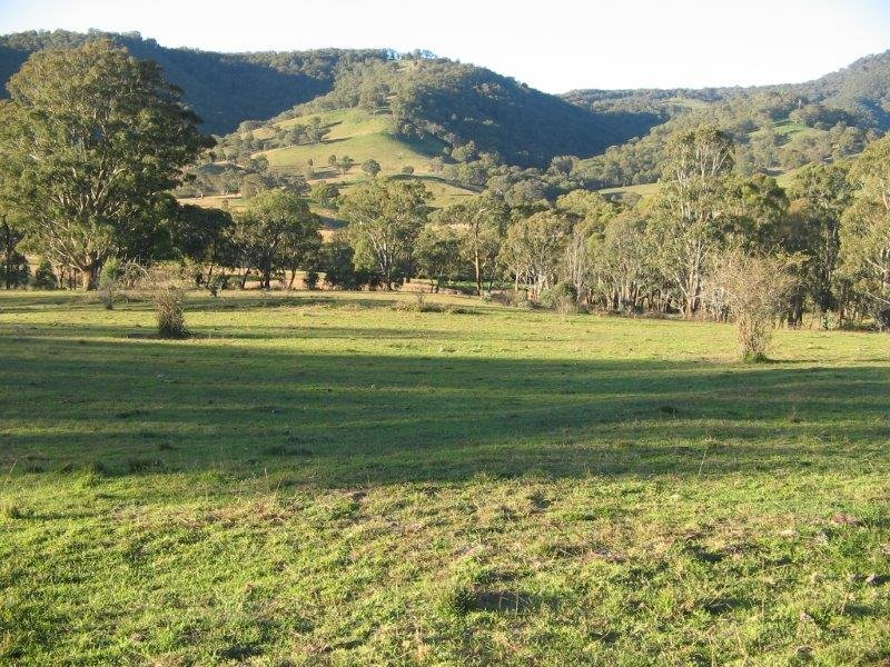 Clarris Park Nundle Creek Road, Nundle, NSW 2340