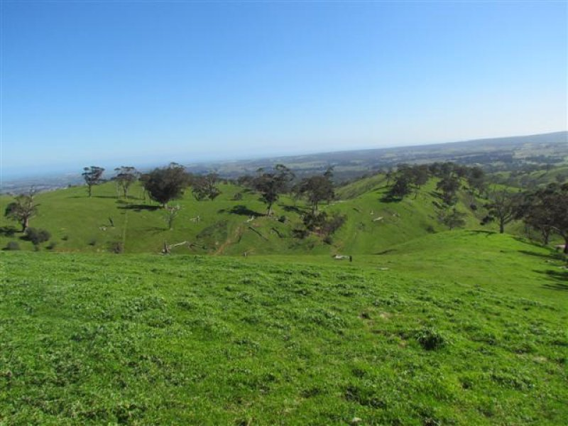 Lot 1 Toops Hill Road, McLaren Flat, SA 5171