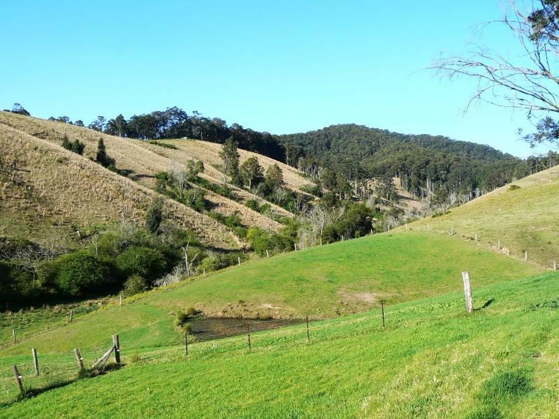 """""""Mundroola"""" 1462 Mooral Creek Road, Mooral Creek, NSW 2429"""
