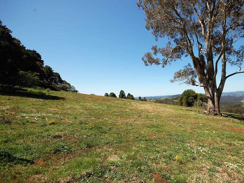 Lot 13 McIndoes Rd, Dorrigo, NSW 2453