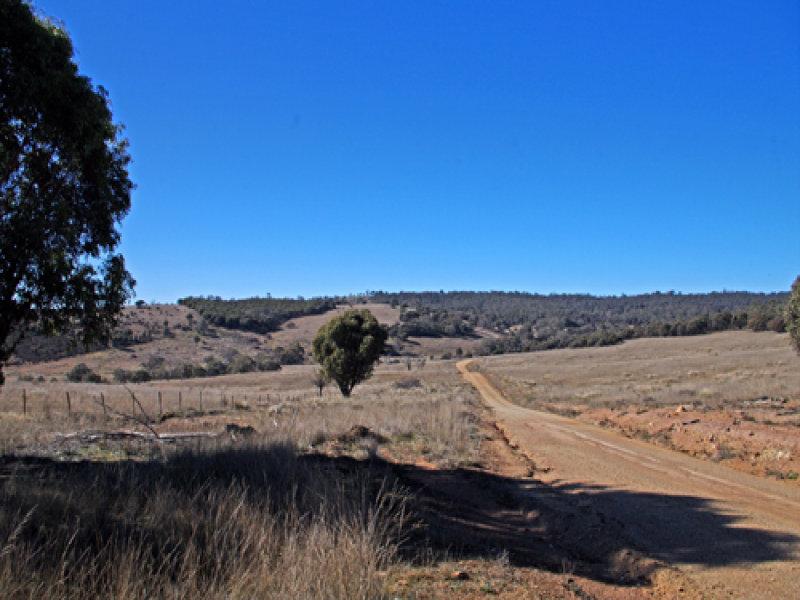 Quidong Road, Bombala, NSW 2632