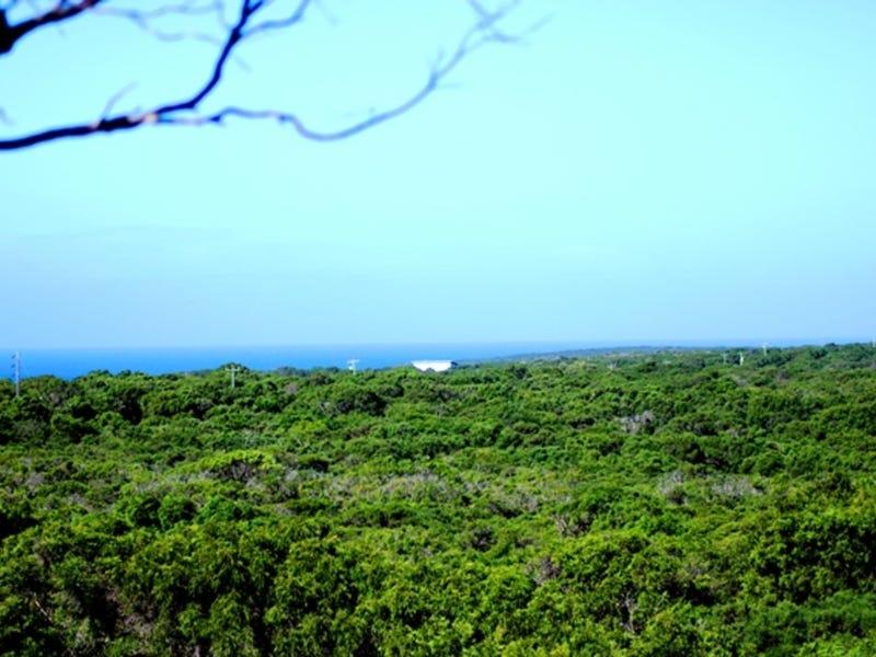Lot 69, Native Dog Beach Road, Bremer Bay, WA 6338