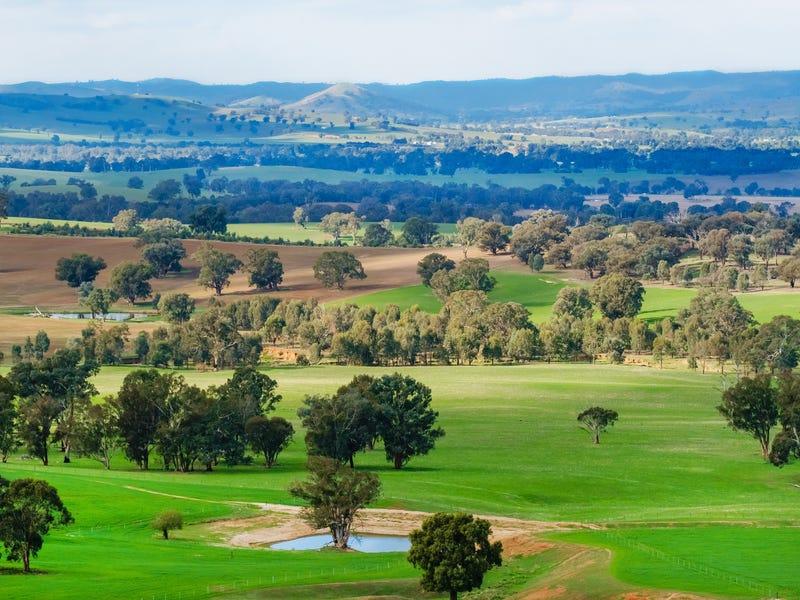 Aberfeldy Hume Highway, Holbrook, NSW 2644