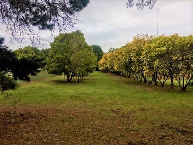 27 Pantics Road, Teesdale, Vic 3328