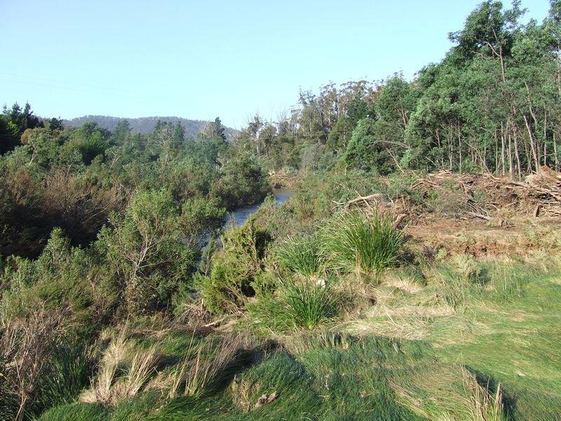 Lot 1 Upper Scamander Road, Upper Scamander, Tas 7215