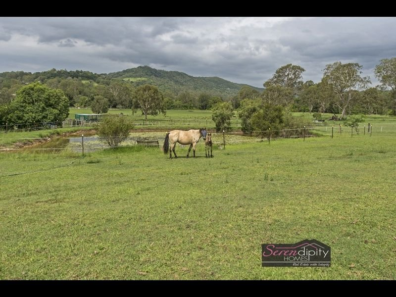 207 Veivers Rd, Cedar Creek, Qld 4207