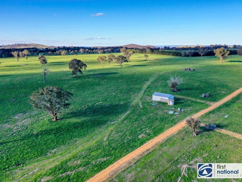 1205 Cooks Hill Road, Bango, NSW 2582