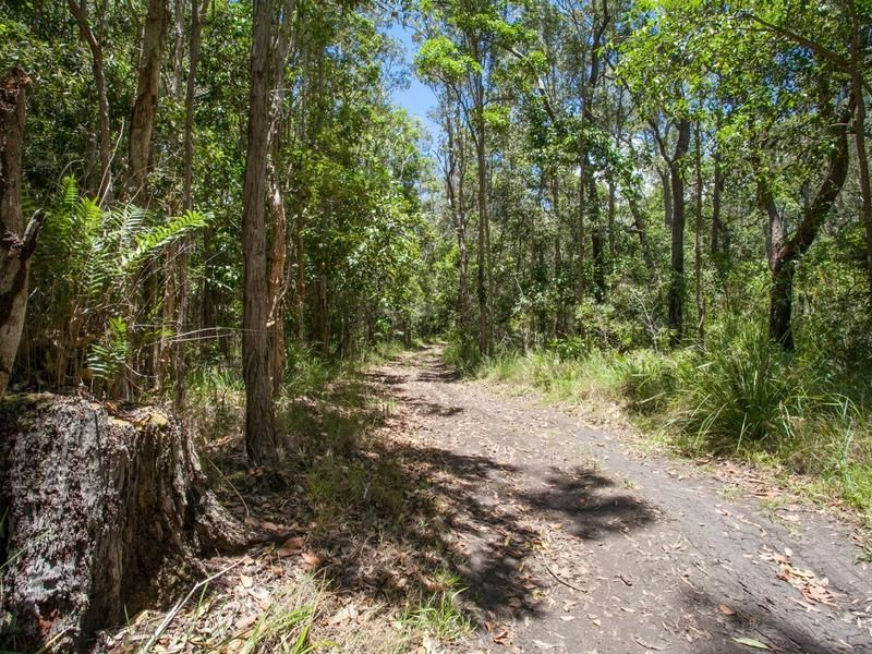 55 Lake Flat Road, Boreen Point, Qld 4565