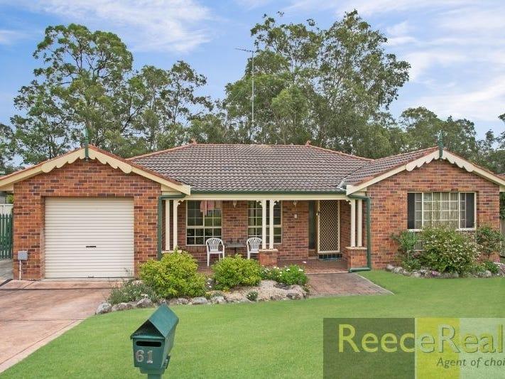 61 Melaleuca Drive, Metford, NSW 2323