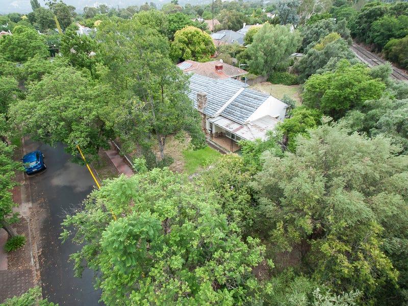 3 Wurilba Avenue, Hawthorn, SA 5062