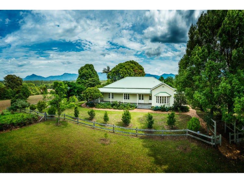 460 Hydes Creek Road, Bellingen, NSW 2454