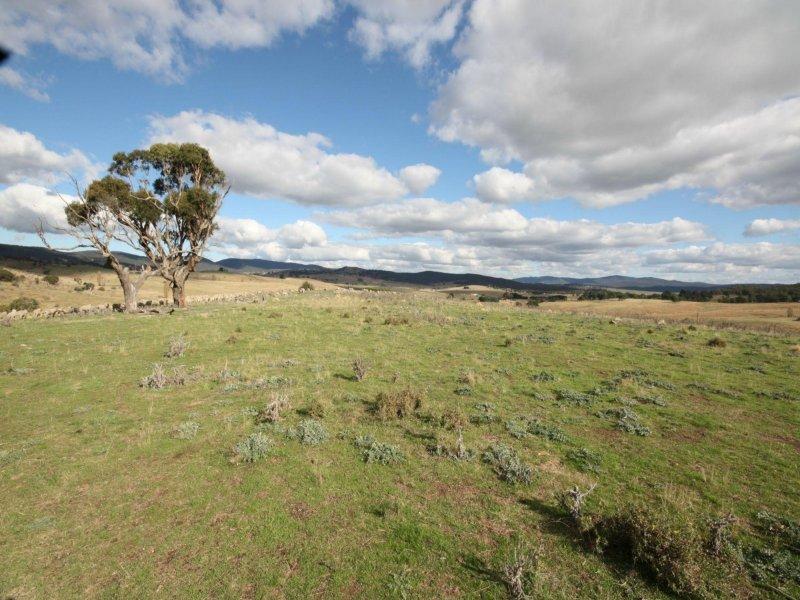 55 Daniel Lane, Forbes Creek, NSW 2621