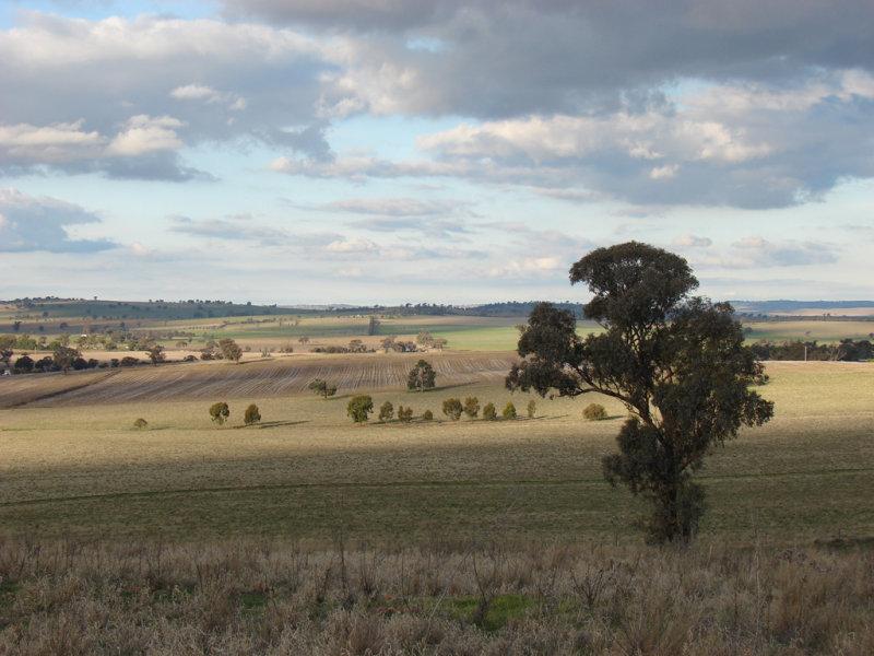 . Willis Lane, Yathella, NSW 2650