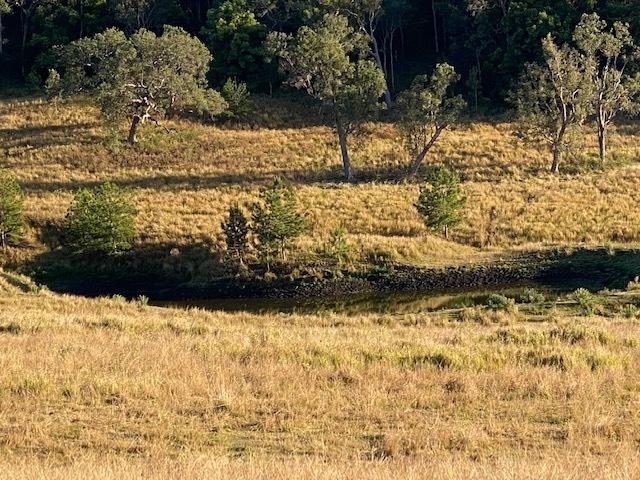 611 Edenville Road, Kyogle, NSW 2474