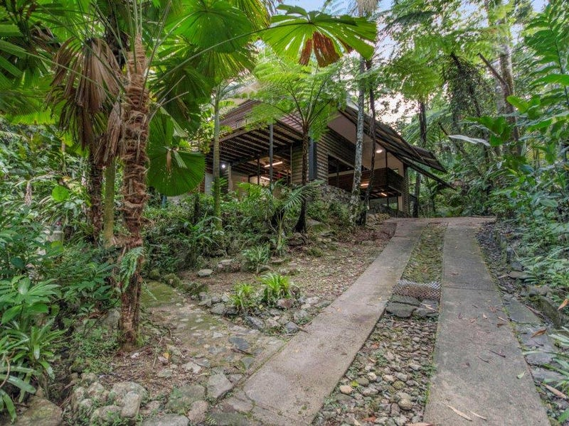 71 Candlenut Road, Daintree, Qld 4873