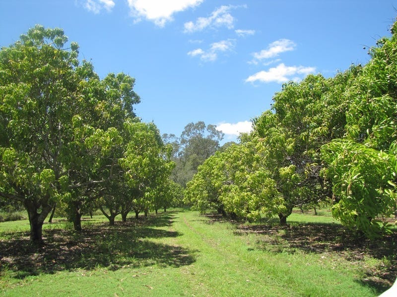 420 Spring Valley Road, West Stowe, Qld 4680