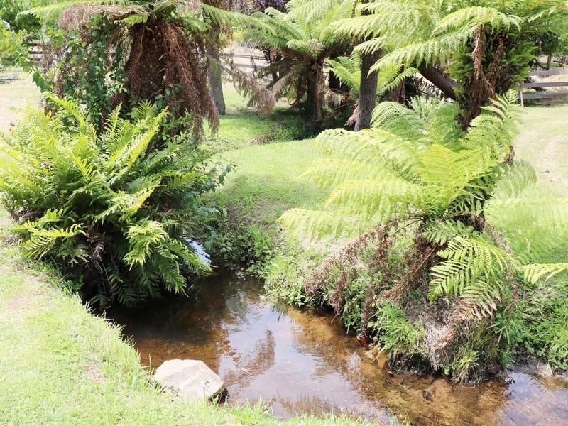 27883 Tasman Highway, Pyengana, Tas 7216