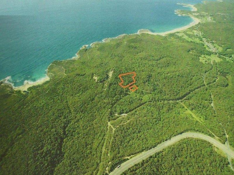 96 Mine Camp, Pinny Beach, NSW 2281