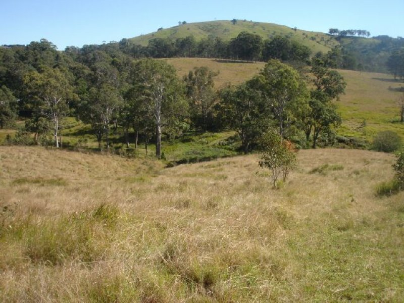Belbora Creek Road, Belbora, NSW 2422