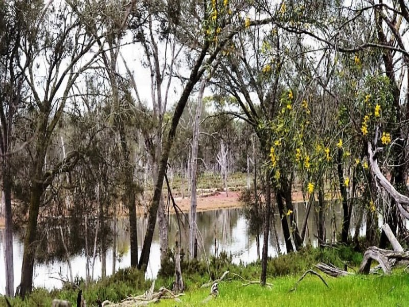 Lot  2560 Great Southern Highway, Highbury, WA 6313