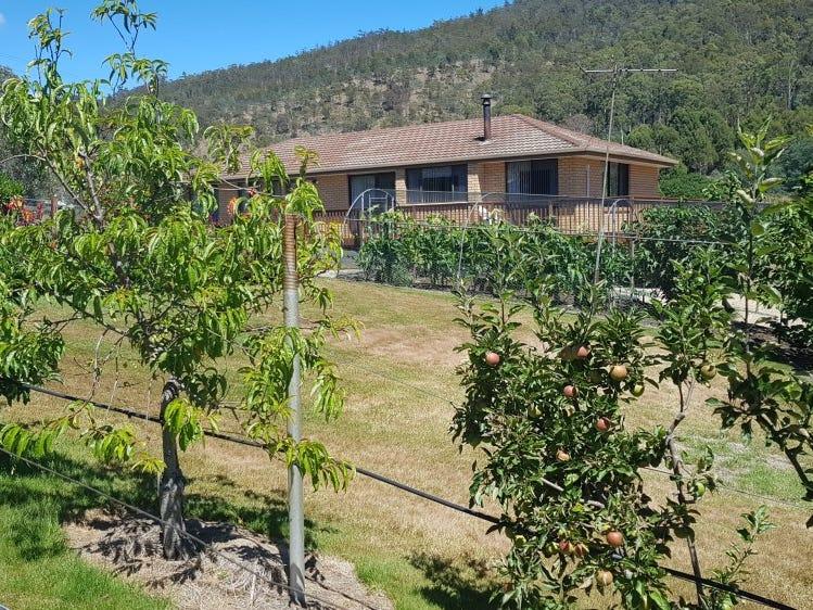 462 Plenty Valley Road, Glenfern, Tas 7140