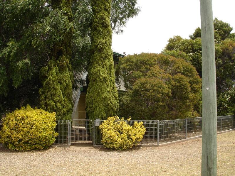 38 Lachlan Street, Baradine, NSW 2396