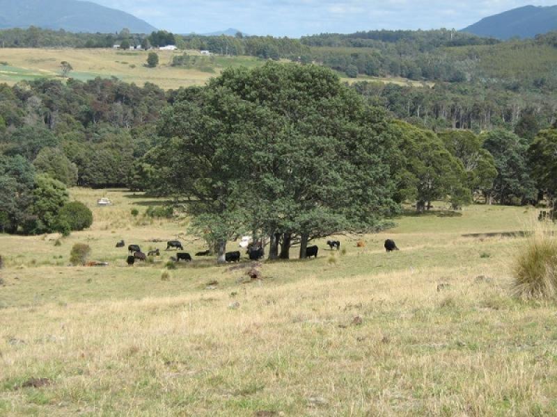0 Maxfields Road, South Nietta, Tas 7315