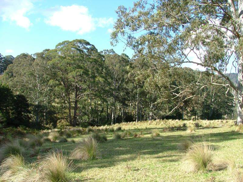 Lot 4/ CRAVEN PLATEAU ROAD, Upper Bowman, NSW 2422