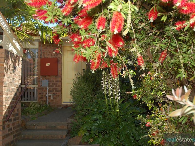 14/215 Kosciuszko Avenue, Palmerston, ACT 2913