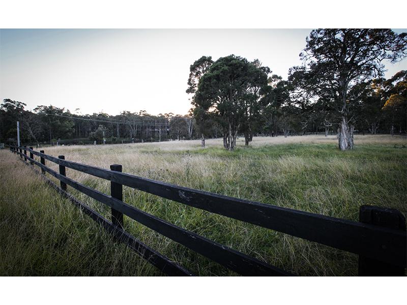 219 Donalds Range Road, Razorback