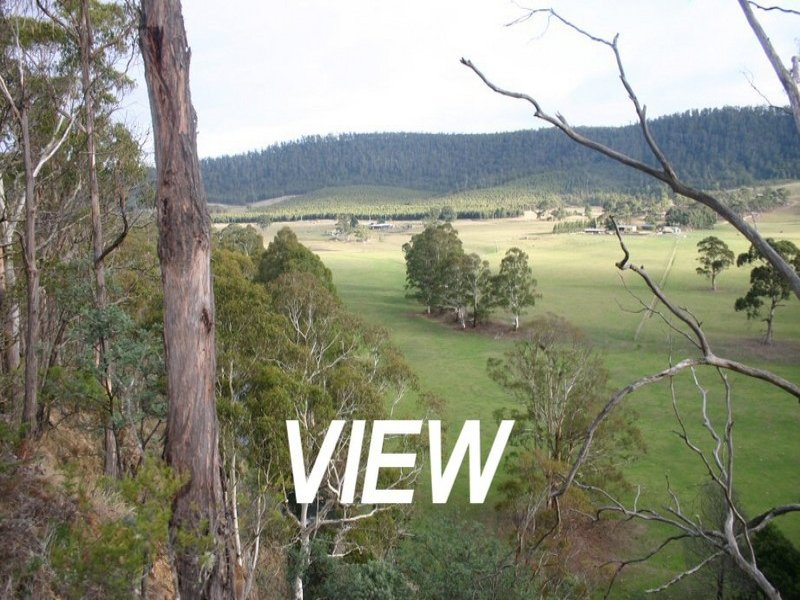 269 Woolleys Road, Lonnavale, Tas 7109