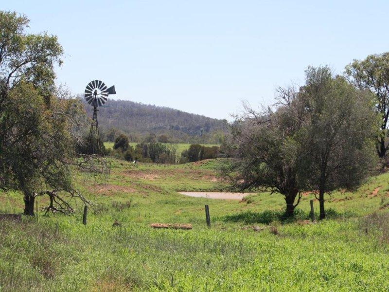 80 Lynchs Road, Mundubbera, Qld 4626