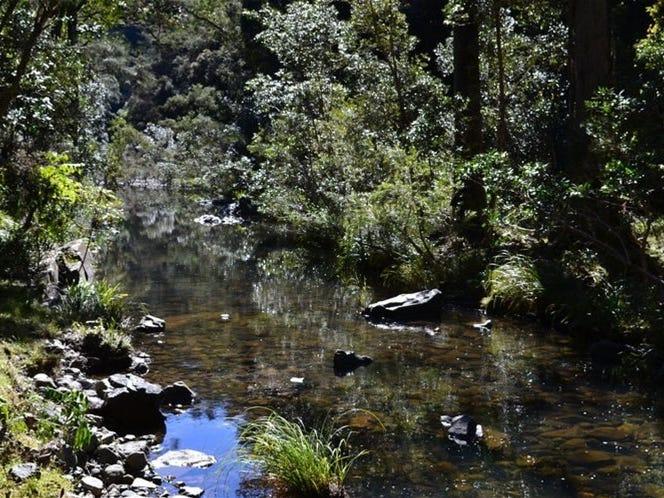 714 Fairweather Creek Rd, Nymboida, NSW 2460