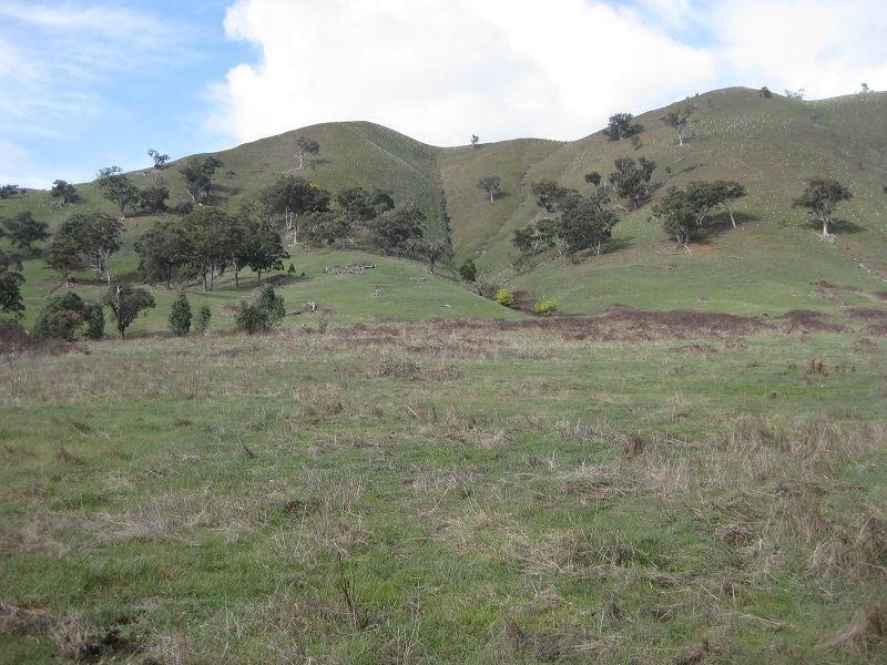 715 King Parrot Road, Strath Creek, Vic 3658