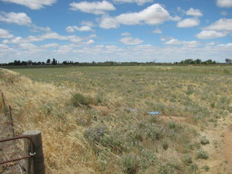Lot 151, Farm 406 Saunderson Road, Leeton