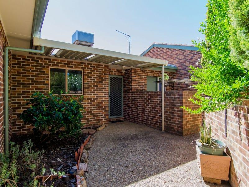 3/438 Kooringal Rd, Kooringal, NSW 2650