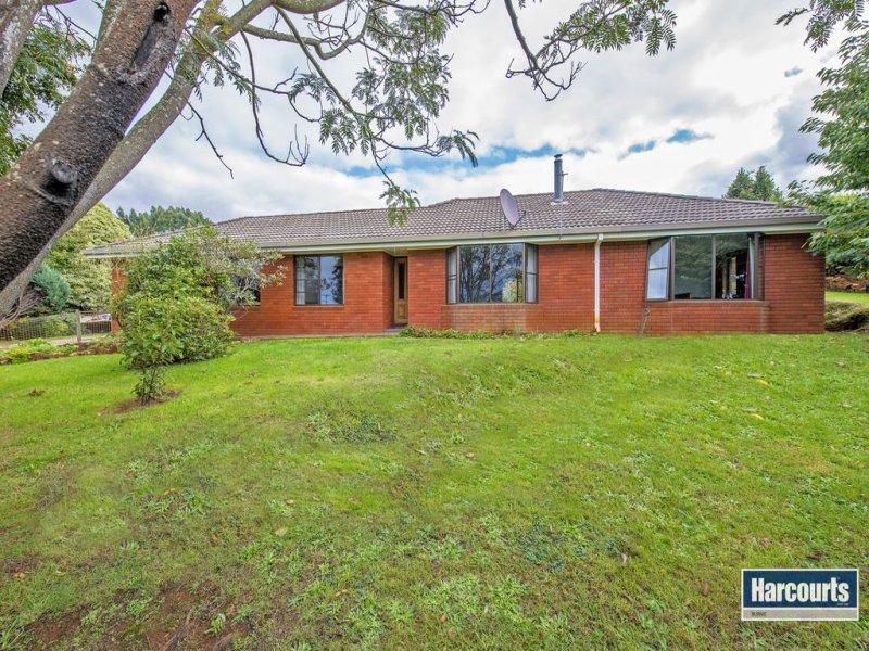 249 Preolenna Road, Flowerdale, Tas 7325