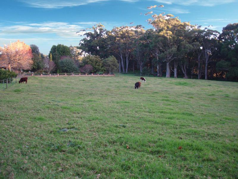 Laurel Hill Myra Vale, Wildes Meadow, NSW 2577