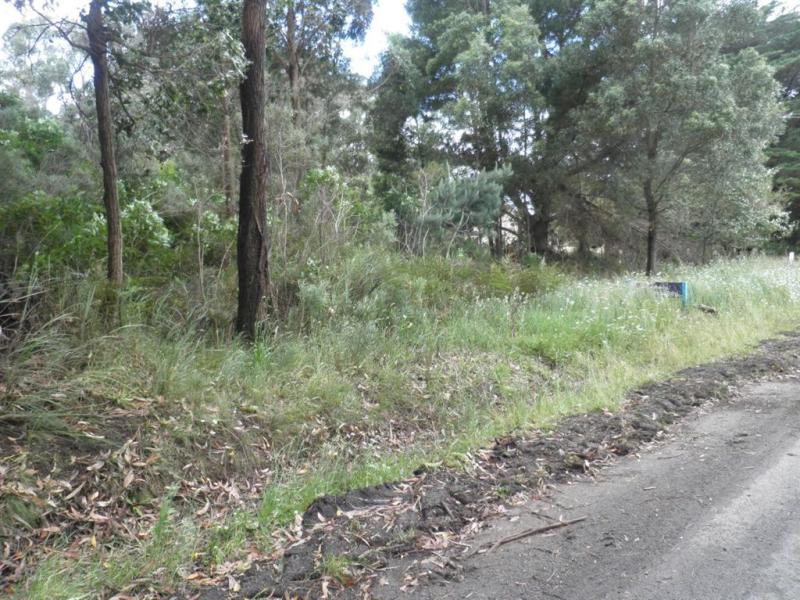 1 Albert River Road, Binginwarri, Vic 3966