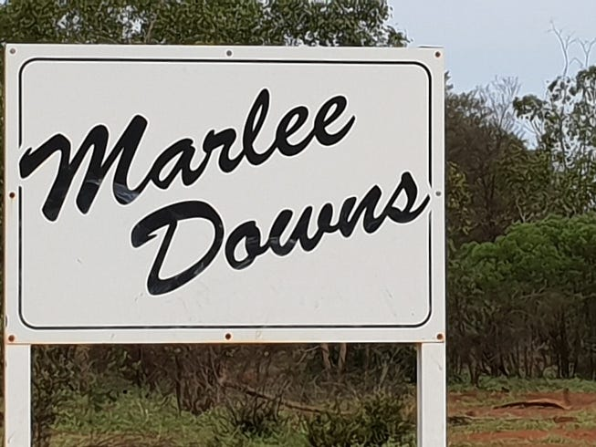 'Marlee Downs', 3386 Dundee Road, Mitchell, Qld 4465