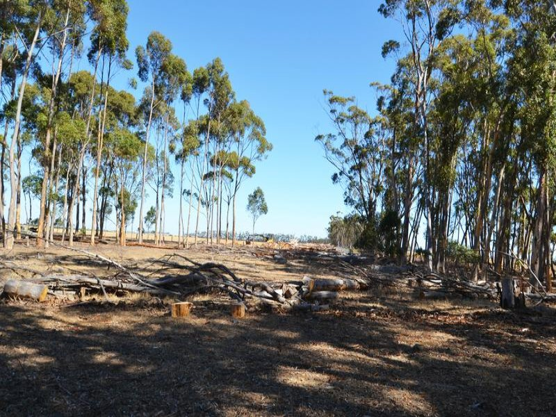 Lot 2 Berrybank - Wallinduc Road, Wallinduc, Vic 3351