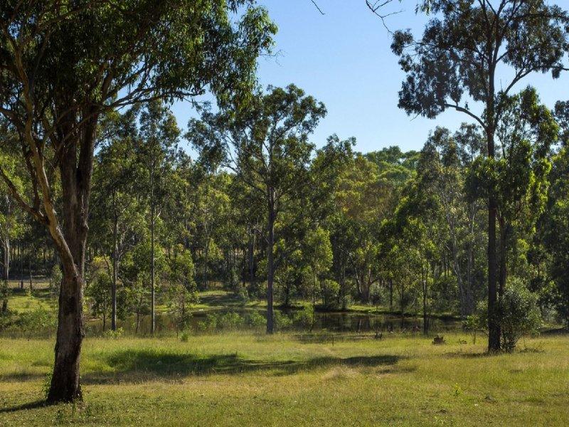 7 POTHANA LANE, Belford, NSW 2335
