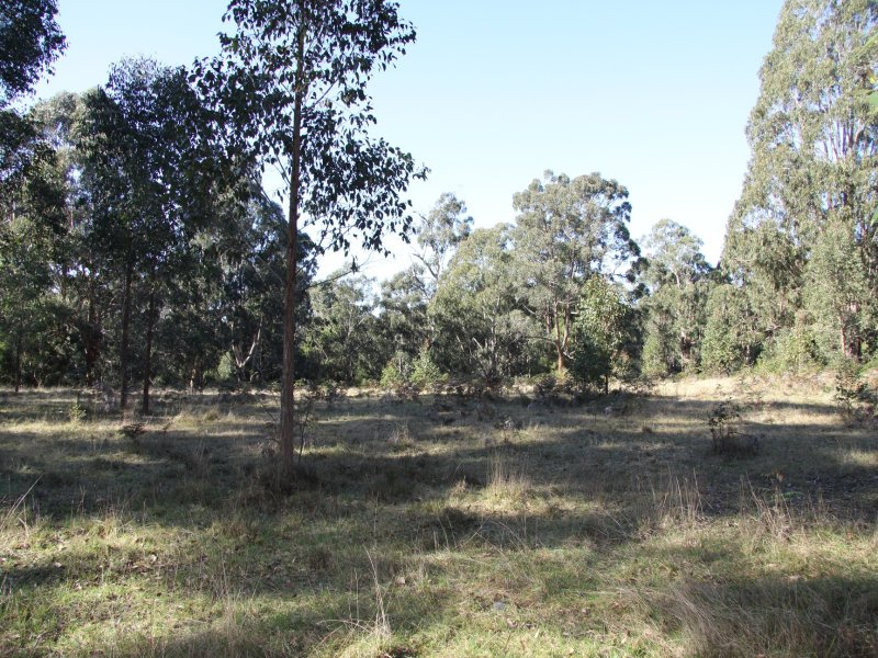 Lot 7, 109 Veldens Road, Toorloo Arm, Vic 3909