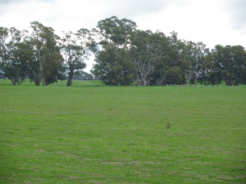 Lot 3 & 4 Elmore - Barnadown Road, Elmore, Vic 3558
