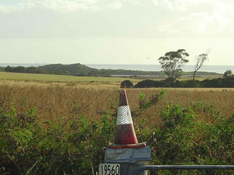 19560 Tasman Highway, Seymour, Tas 7215