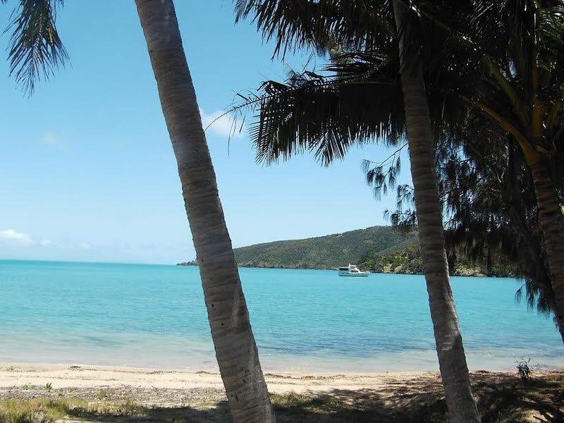 * St. Bees Island, Whitsundays
