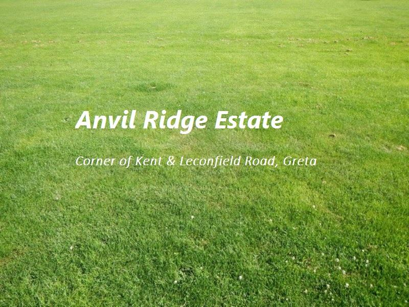Lot, 303 Anvil Ridge Estate, Greta, NSW 2334