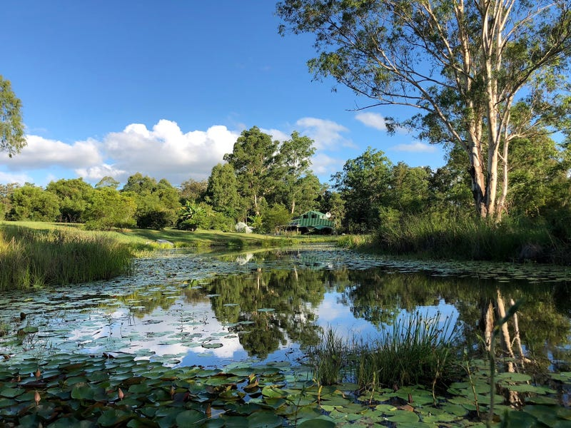 144 Stringybark Lane, Toonumbar, NSW 2474