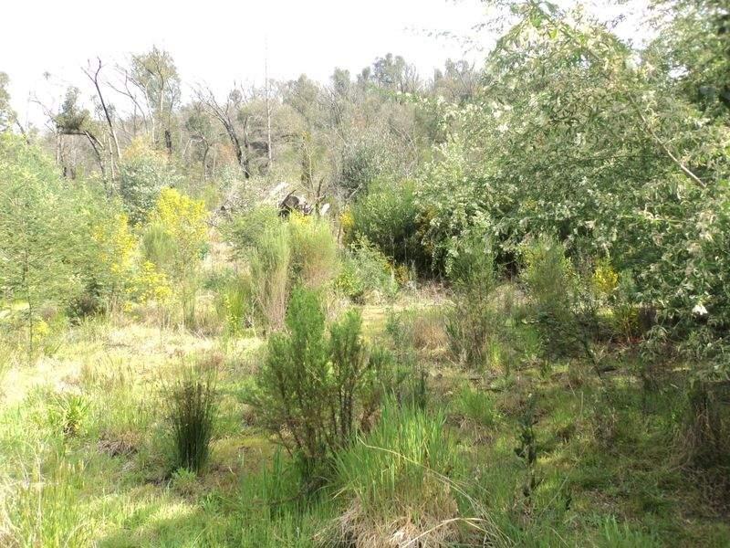 30 Long Gully Rd, Hazeldene, Vic 3658